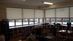 Clayton Bradley Academy Shades