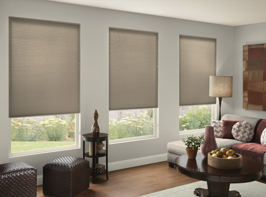 Comfortex Debut Shades - Knoxville, TN
