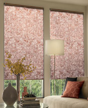 Debut Cellular Shades by Comfortex